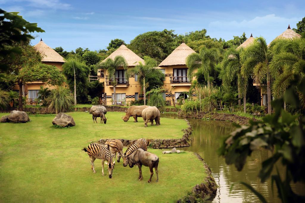 5 Nights at a Safari Hotel