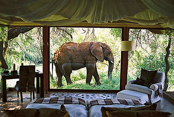 2 Nights at the Elephant Hotel Suite