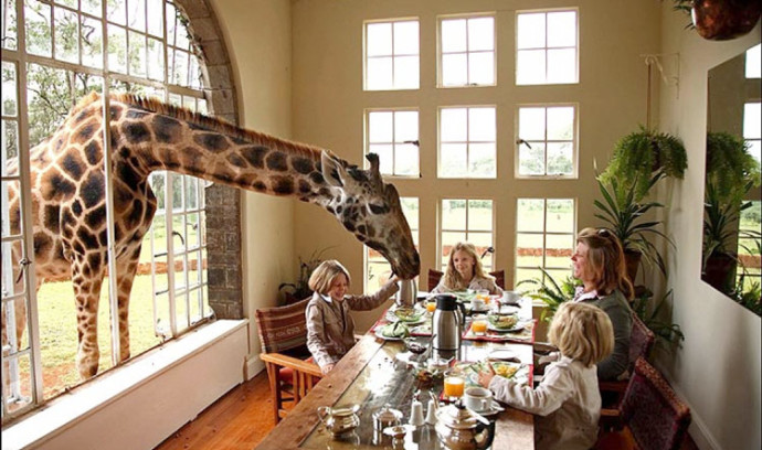 2 Nights at Giraffe Manor