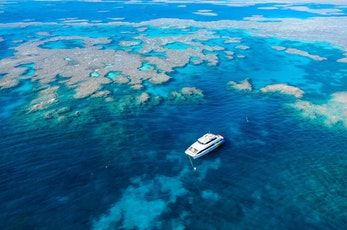 Great Barrier Reef Tours and Activities